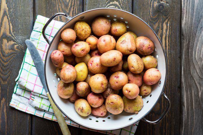 Quelle pomme de terre utiliser pour quelle recette - Quelle terre pour hortensia ...