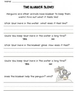 Blubber Glove Worksheet Freebie