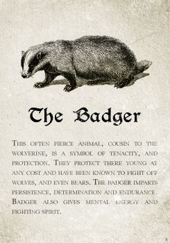 Hufflepuff: The Badger. Pottermore Sorting: Sorting Hat Analysis and Meta