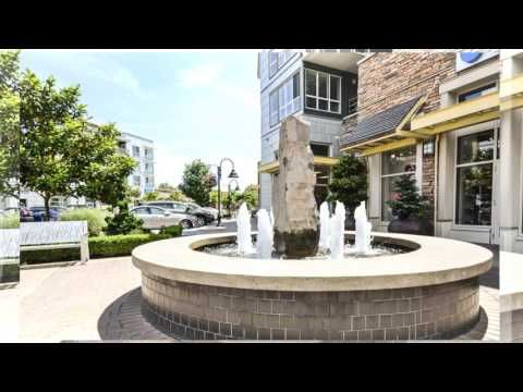 VIDEO TOUR: Bright and Open Condo in Sought After Location - Westport Properties Group