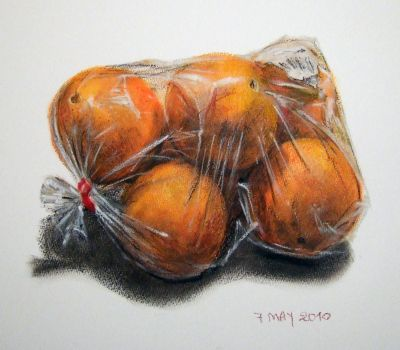 oranges in a nylon bag. Nice, realistic colored drawing