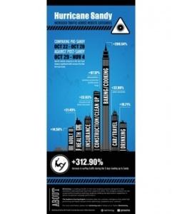 Netmining Hurricane Sandy Infographic