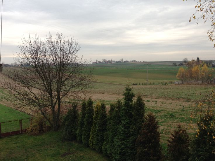 November - from our house