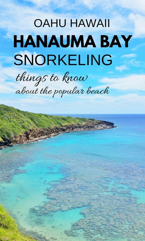 Best 25 snorkeling ideas on pinterest cayman islands for Fishing spots oahu