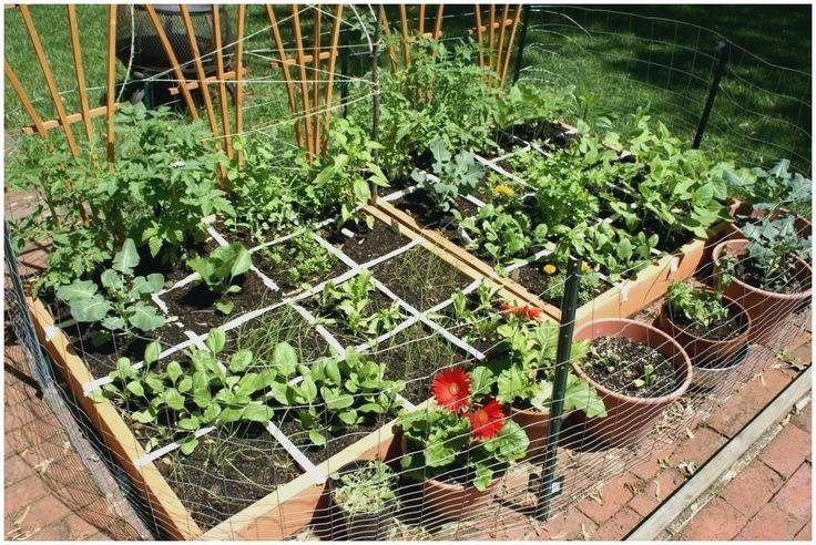 Beans Foot Garden Gardening Inspirational Layout Pole Square Inspir Small Vegetable Gardens Square Foot Gardening Vegetable Garden For Beginners