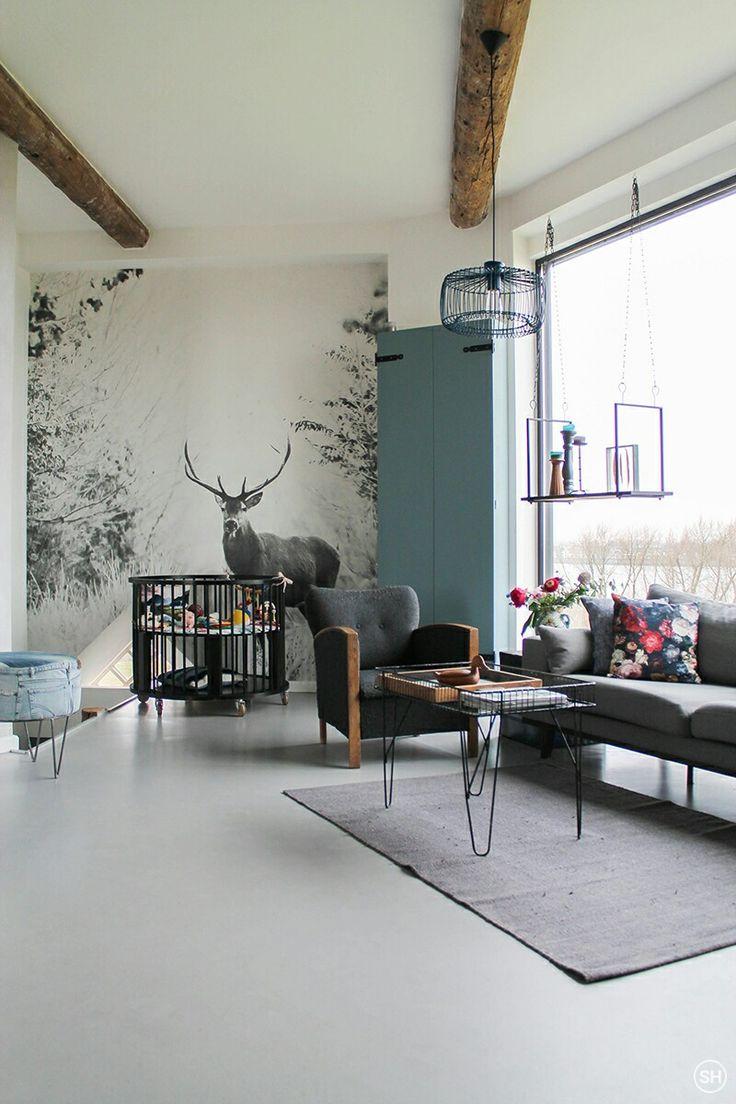 Pin von Nicola Comes auf Wandfarben   Wohnzimmer ideen gemütlich, Haus wohnzimmer, Wohnen
