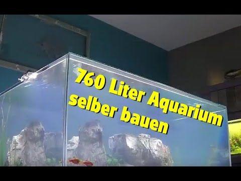ber ideen zu aquarium einrichten auf pinterest. Black Bedroom Furniture Sets. Home Design Ideas