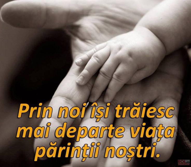 http://www.rol.ro/