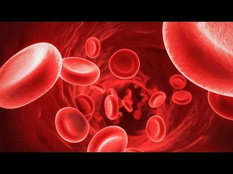 Why Do We Have Different Blood Types? Why Do We Have Different Blood Types? What does A+, A-, B+, B-, AB+, AB-, O+ and O- mean? Find out about the different blood types we have (ABO Blood Group System and Rh Blood Group System)! By: sciBRIGHT.