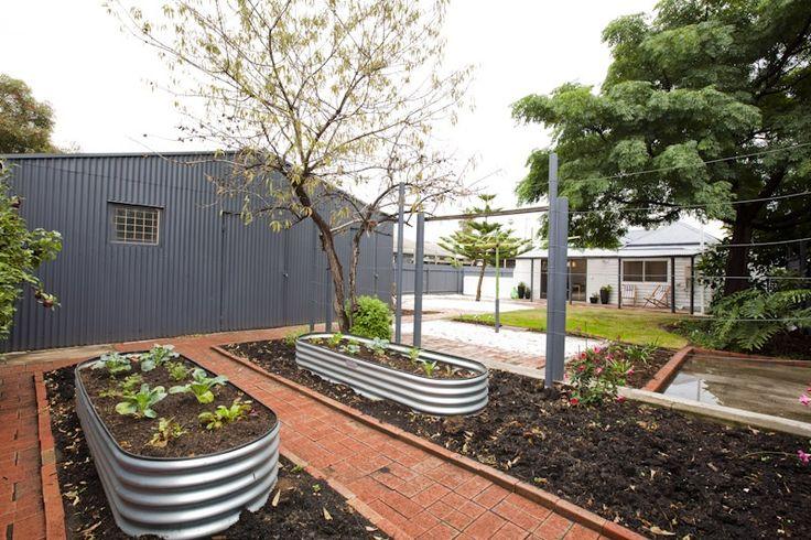 exterior : backyard veggie garden