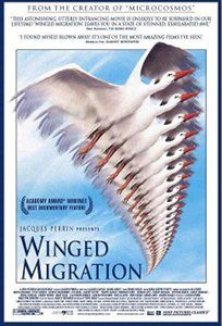 A documentary about the migratory patterns of birds, taken over three years and all seven continents.