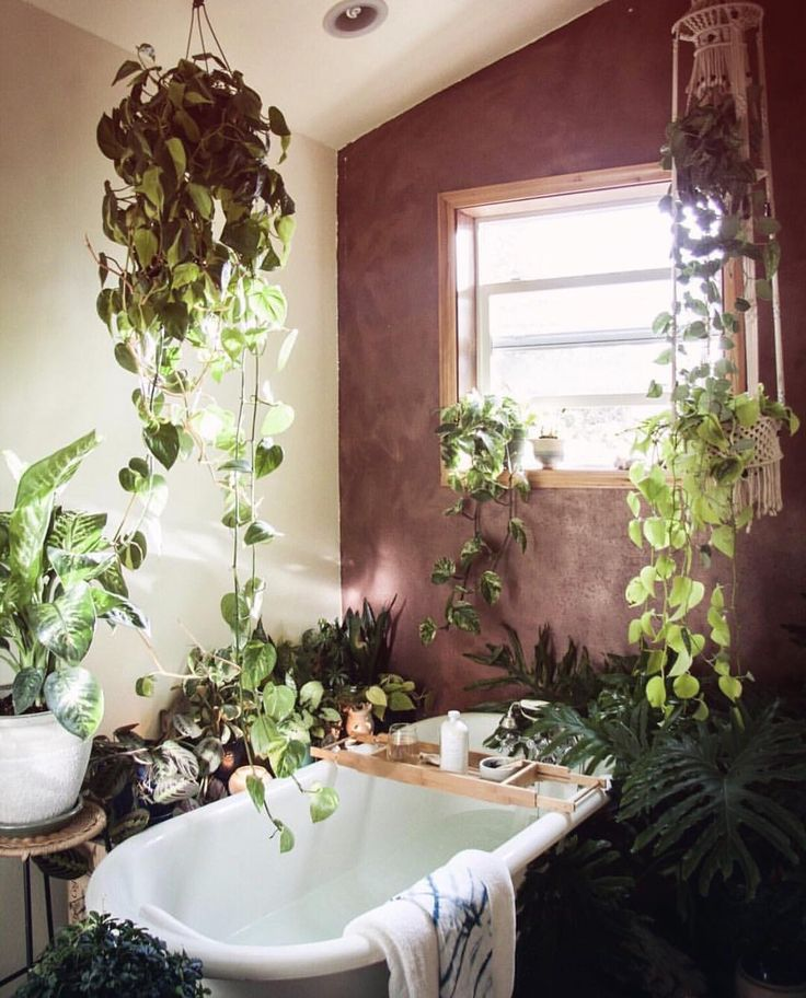 pin by botanical bright on rooms for plant lovers home bathroom house. Black Bedroom Furniture Sets. Home Design Ideas