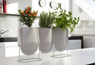 URBAN GARDEN ~ This versatile system does not require any saucers or planters. They are filled with water retaining clay granuels that prevent waterlogging and release an even amount of moisture. The result – a notable reduction in watering,low maintenance, clean and mobile.