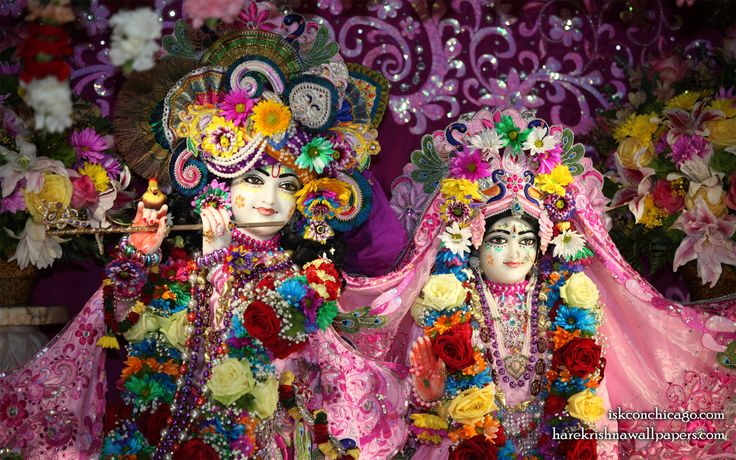 To view KIshore Kishori Close Up Wallpaper of ISKCON Chicago in difference sizes visit - http://harekrishnawallpapers.com/sri-sri-kishore-kishori-close-up-iskcon-chicago-wallpaper-017/
