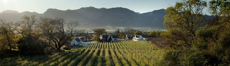 Laborie Wine Farm Paarl Home
