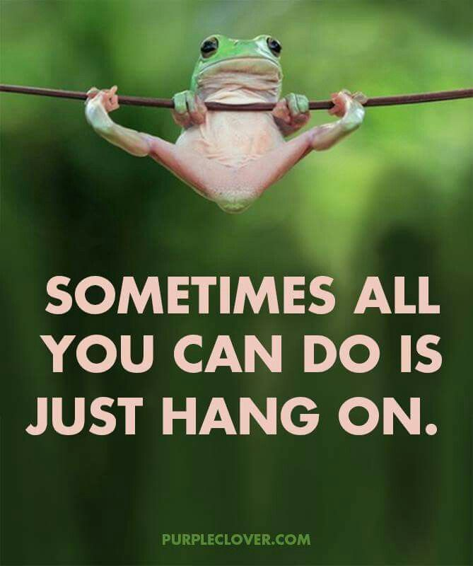 Hang In There Quotes Hang In There  Quote Of The Day  Pinterest  Truths Inspirational