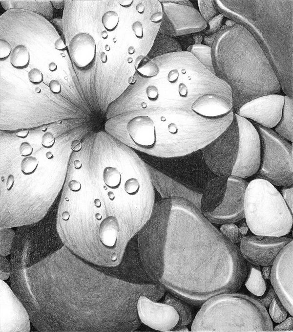 Beautiful Flower Drawings for Inspiration, http://hative.com/flower-drawings/,