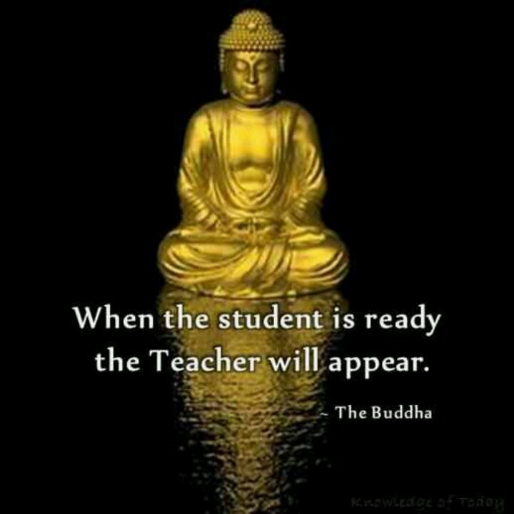 Quotes By Buddha: 477 Best Images About Buddha