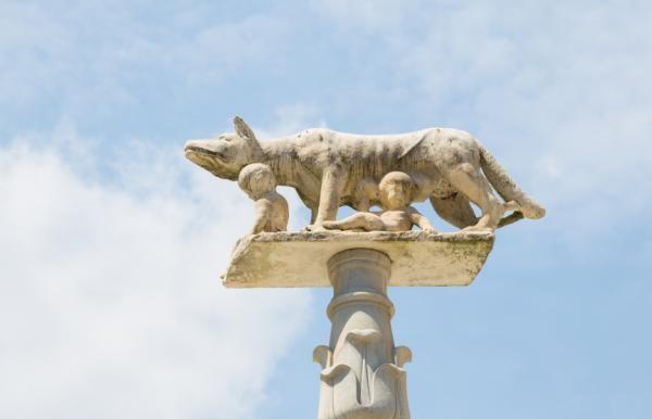 Nombres para perro de la Mitología Romana   Perros Peru   Perros ...