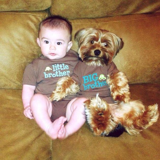 Малыш с щенком