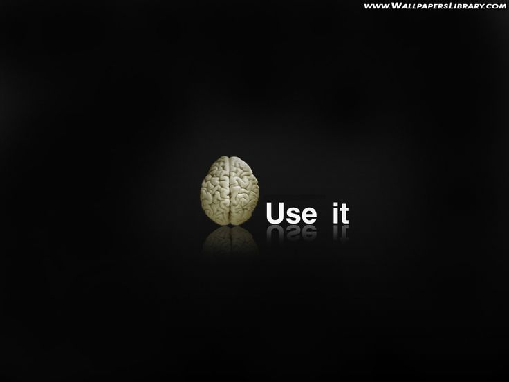 Use It Funny Wallpaper