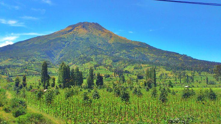Gunung Sindoro. Indonesia.