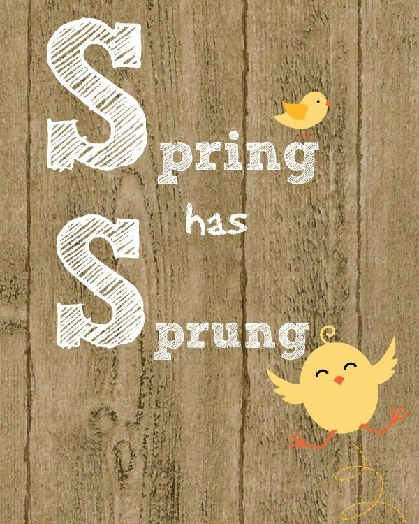 Spring has sprung free printable