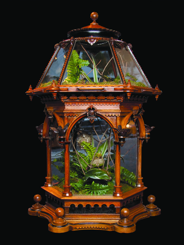 "*VICTORIAN RENAISSANCE RE VIVAL HEXAGONAL TERRARIUM ~ six canted glass sides of the top + bottom section,framed with well carved moldings. The collection of rare plants was a popular pastime + pursuit. ""Collectors"" would show case their field speciments at home. The terraium is a direct descendent of Wardian case (invented 1829 by Dr. Nathaniel Ward) which can closely replicate the Earth's water cycle, trapping + recycling the available moisture + encouraging growth. English, c. 1860-70."
