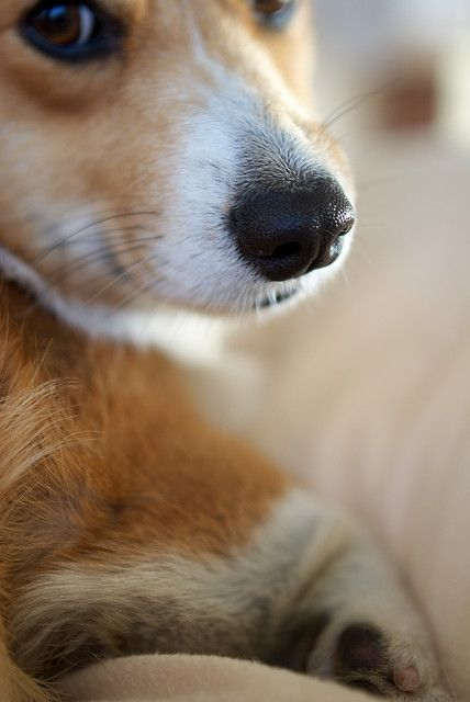 """""""I wanna love you and treat you right, I wanna love you every day and every night..."""" Bob Marley, """"Is This Love?"""" 