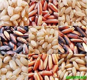 El arroz blanco y el arroz integral aportan cantidades similares de calorías, carbohidratos, proteínas y grasas. Sin embargo, el aporte de nutrientes como potasio, sodio, fósforo, hierro, magnesio, calcio, zinc y selenio se encuentran en mayores cantidades en el arroz integral.