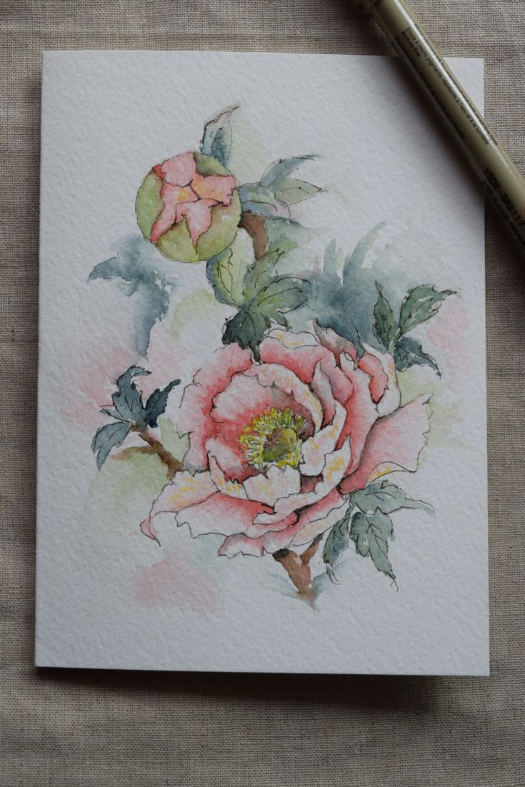 Perzik Peony aquarel geschilderd Card origineel door SunsetPeonies