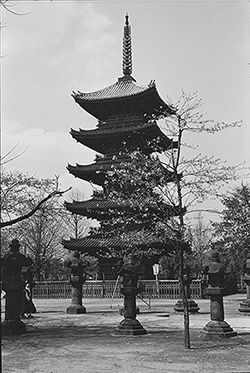 The Five-Storied Pagoda at Nara, a photo by Joseph Campbell from his trip to Japan in 1955, from the book ASIAN JOURNALS, available now from New World Library
