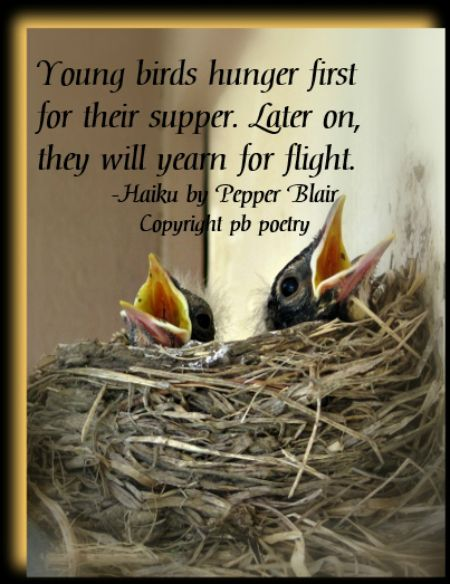 Young Birds--View more of Pepper's work: http://www.love-pb-poetry.com/
