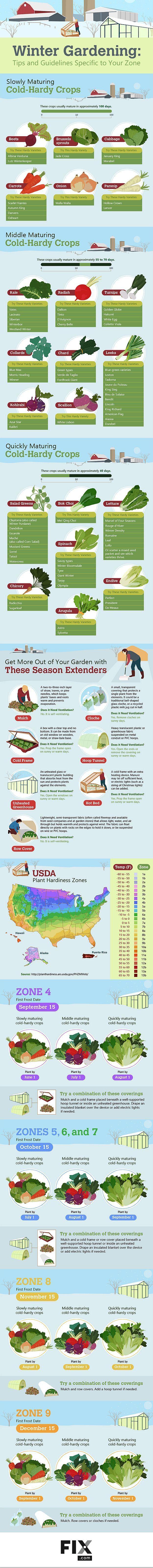 best 25 winter vegetable gardening ideas on pinterest winter