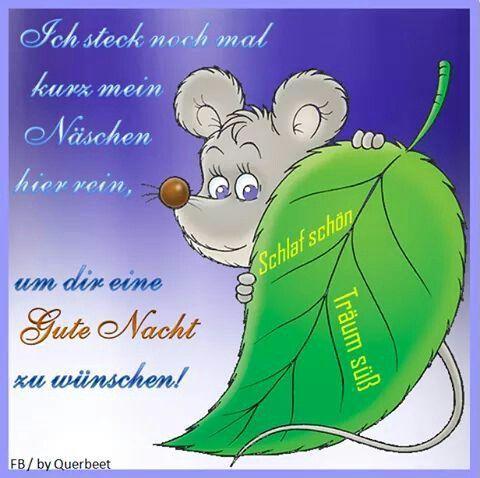gute nacht Freunde , bis morgen - http://guten-abend-bilder.de/gute-nacht-freunde-bis-morgen-40/