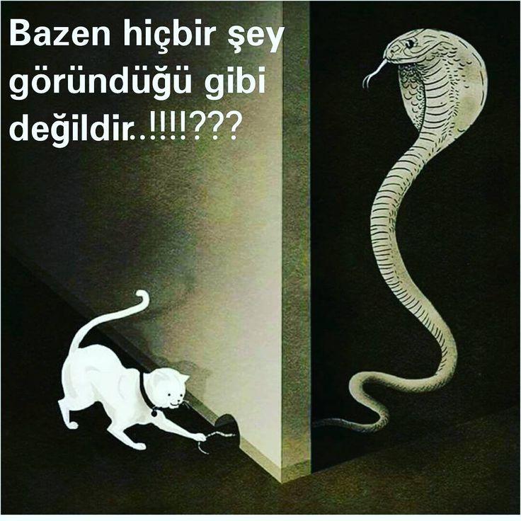 Takip edelim...arkadaslarinizi | turkiye  allah