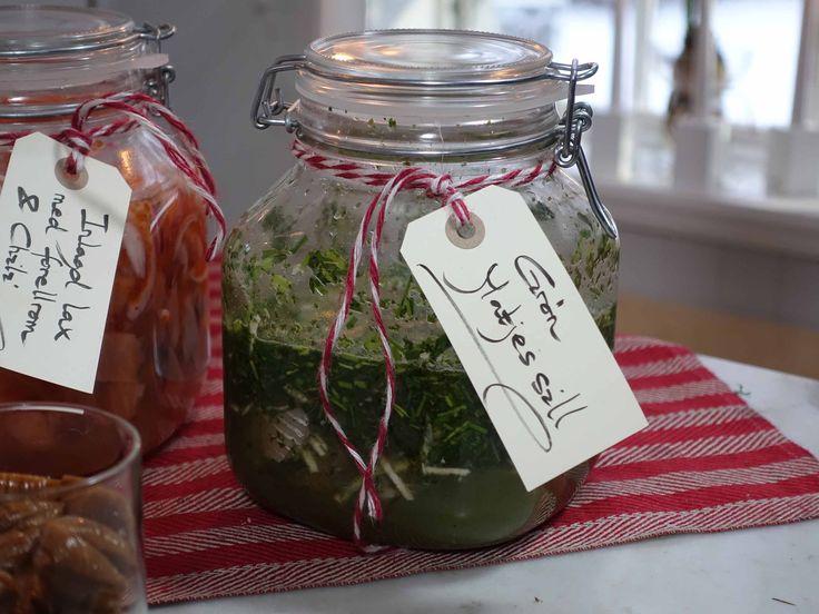 Örtig matjessill med pepparrot | Recept från Köket.se
