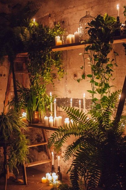 THE COLLECTOR AND CO - WEDDING STYLING AND HIRE GOLD COAST BYRON BAY | BOTANICAL STYLING