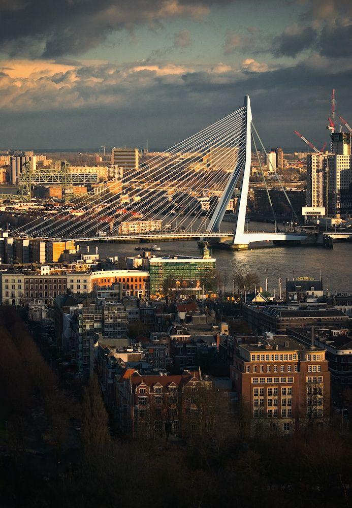 Erasmus Bridge in Rotterdam, The Netherlands. #Rotterdam #Netherlands
