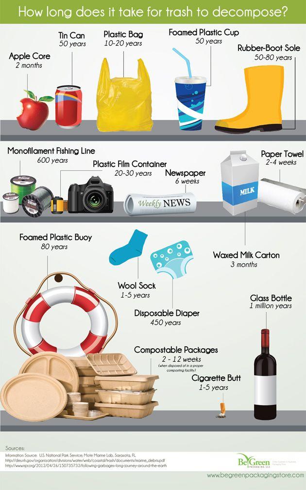 Trash Decomposition Infographic