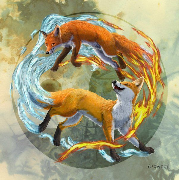Fire Amp Water Yinyang Fox Elemental Anivide Yin Yang