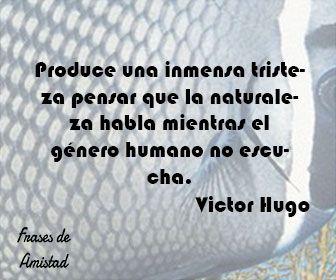 Frases filosoficas de tristeza de Victor Hugo