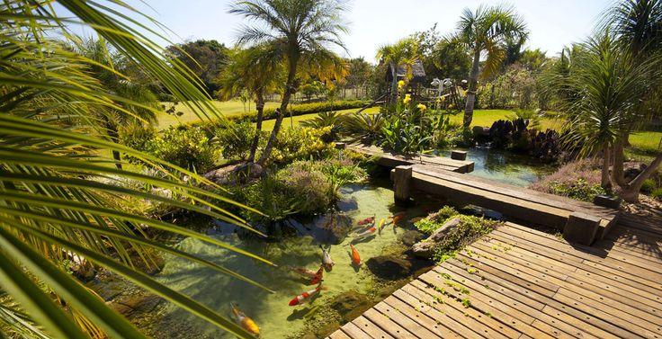Best 25 lago artificial ideas on pinterest decora o de for Casa jardin winter park fl