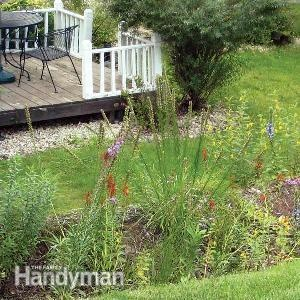 Try these expert and homeowner-tested solutions to common backyard landscape problems—eroding slopes, a shady lawn, wet soil, bad soil, mushrooms and swampy areas.