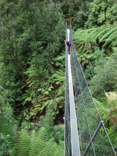 Montezuma Falls track, Tasmania