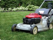 Weed Control in Lawns: Treating & Controlling Weeds in Lawn - Weed Control Tips