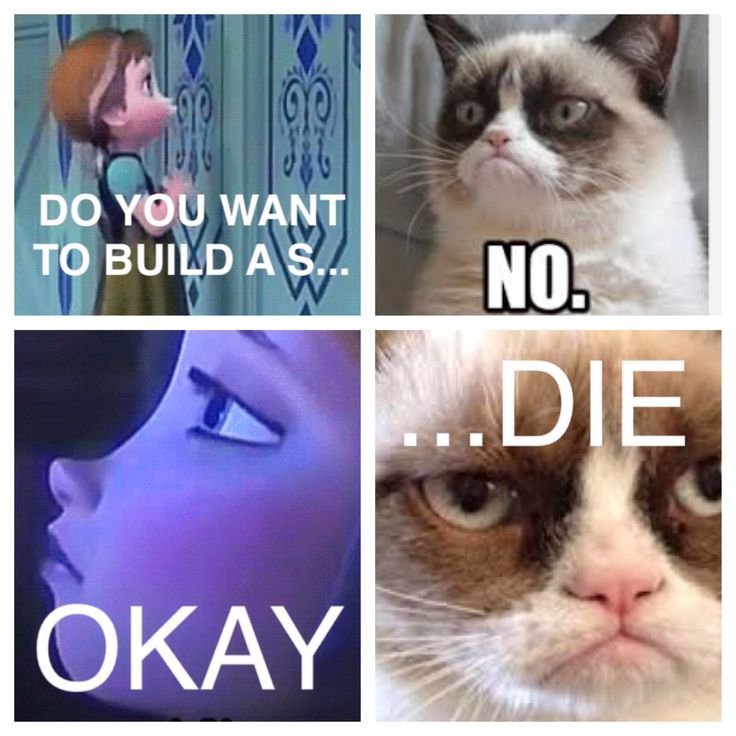 Do you want to build a sNOwman? Anna & Grumpy Cat, Frozen mash-up.
