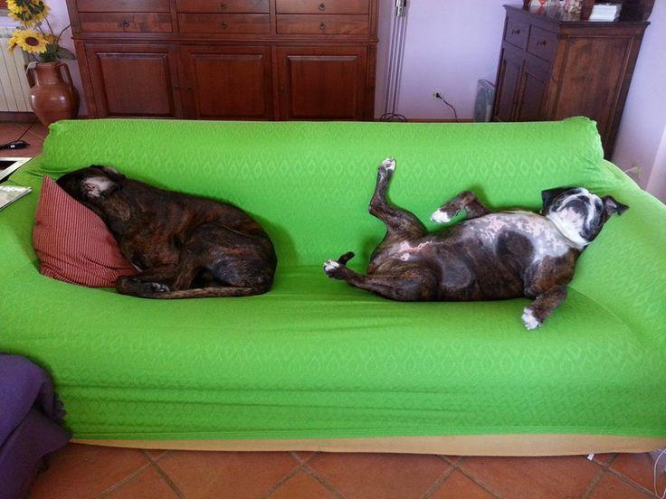 Sul divano!