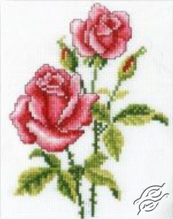 Roses - Cross Stitch Kits by RTO - C185