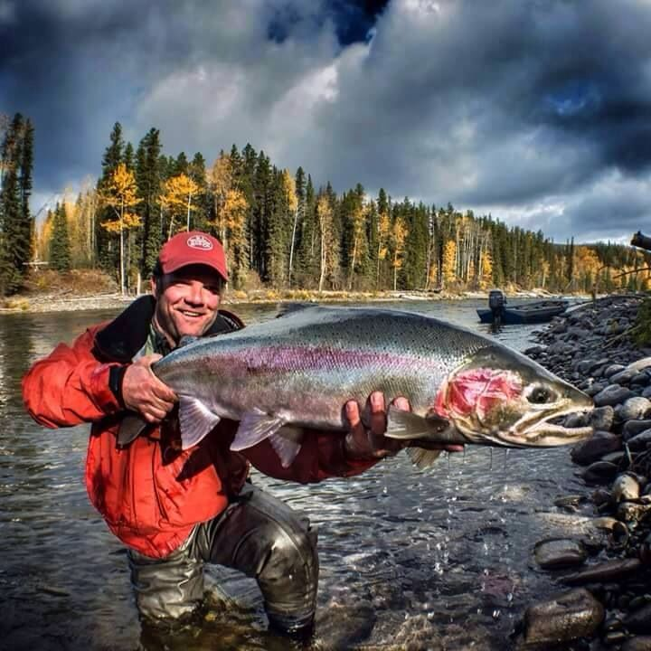 339 best steelhead images on pinterest fishing fly for Joy fishing tackle